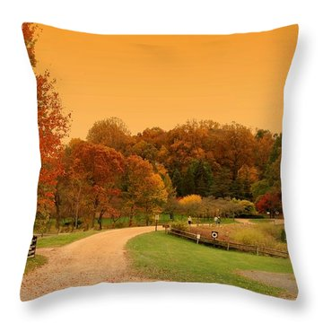 Autumn In The Park - Holmdel Park Throw Pillow by Angie Tirado