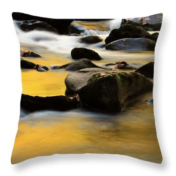 Autumn In The Water Throw Pillow by Dan Sproul