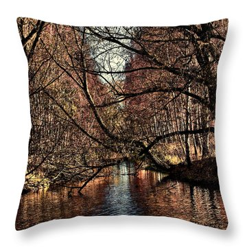 Autumn Light By Leif Sohlman Throw Pillow by Leif Sohlman
