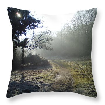 Autumn Morning 2 Throw Pillow by David Stribbling