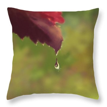 Autumn Rain Throw Pillow by Kume Bryant