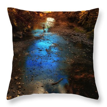 Autumn Reflections On The Tributary Throw Pillow by Thomas Woolworth