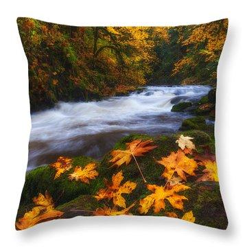 Autumn Returns Throw Pillow by Darren  White