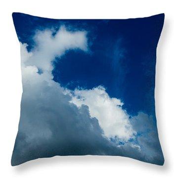 Autumn Skies Throw Pillow by Alexander Senin