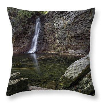Autumn Swirls Throw Pillow by James Dean