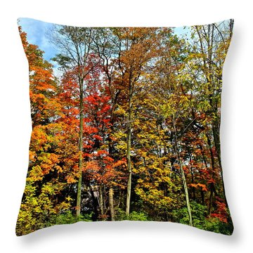 Autumnal Foliage Throw Pillow by Frozen in Time Fine Art Photography