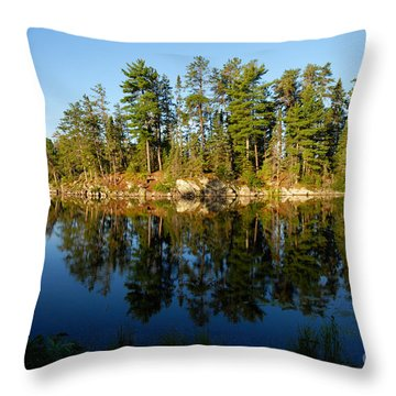 Awesub Morning 2 Throw Pillow by Larry Ricker