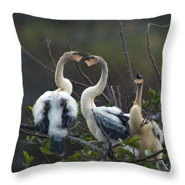 Baby Anhinga Throw Pillow by Mark Newman