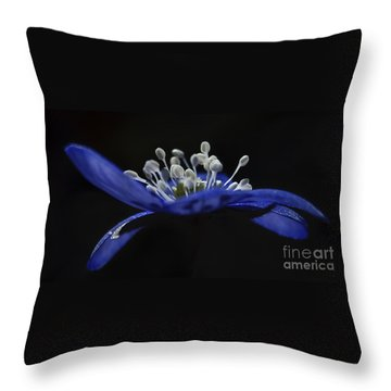 Baby Blues.. Throw Pillow by Nina Stavlund