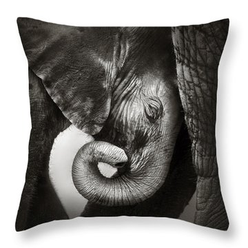 Baby Elephant Seeking Comfort Throw Pillow by Johan Swanepoel