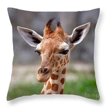Baby Giraffe Throw Pillow by Louise Heusinkveld