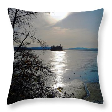 Baby Island Throw Pillow by Pamela Patch