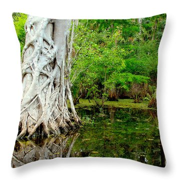 Backcountry Throw Pillow by Carey Chen