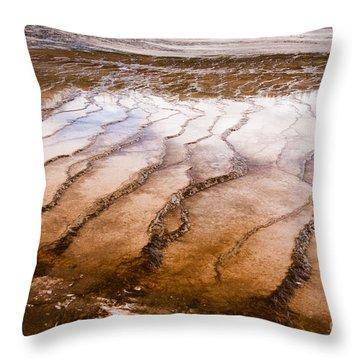 Bacterial Mat - 1 Throw Pillow by Dan Hartford