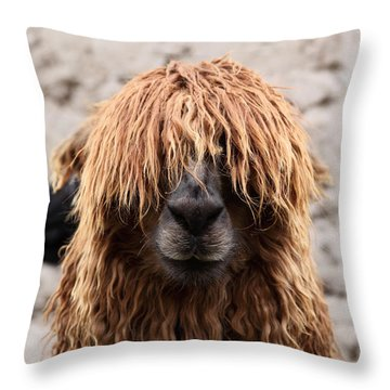 Bad Hair Day Throw Pillow by James Brunker