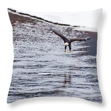 Bald Eagle Throw Pillow by Steven Ralser