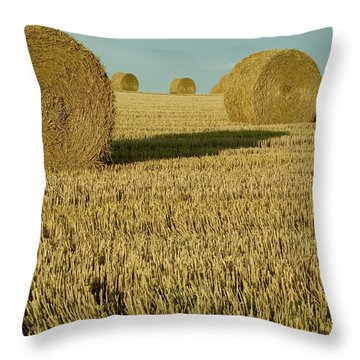Bales Of Grain At Harvest Time Throw Pillow by Cyril Ruoso