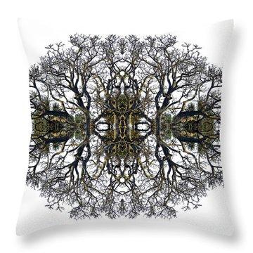 Bare Tree Throw Pillow by Debra and Dave Vanderlaan