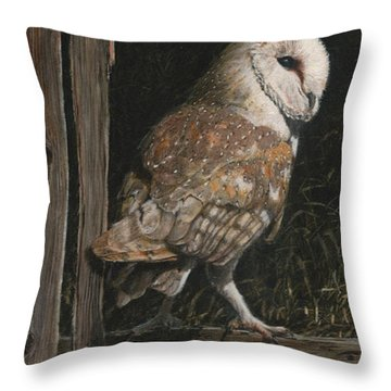 Barn Owl In The Old Barn Throw Pillow by Rob Dreyer AFC