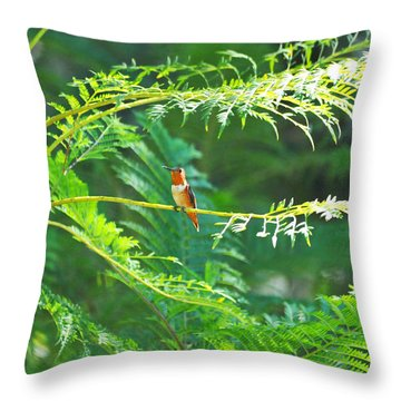 Basking In The Morning Light Throw Pillow by Lynn Bauer
