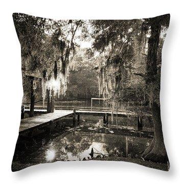 Bayou Evening Throw Pillow by Scott Pellegrin