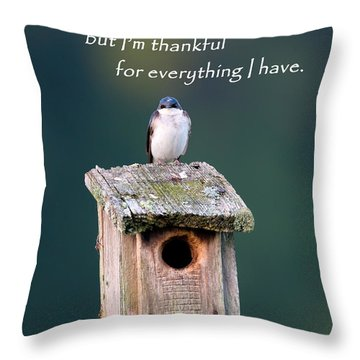 Be Thankful Throw Pillow by Bill Wakeley