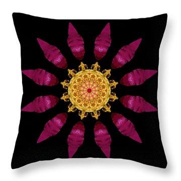 Beach Rose Iv Flower Mandala Throw Pillow by David J Bookbinder