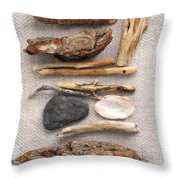 Beach Treasures Throw Pillow by Elena Elisseeva