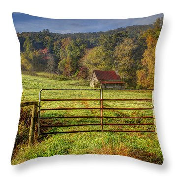 Beautiful Reds Of Autumn Throw Pillow by Debra and Dave Vanderlaan