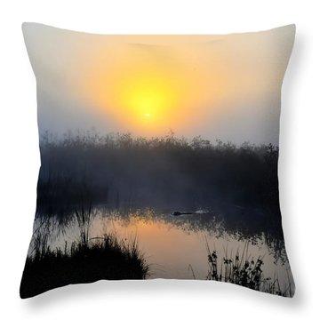 Beaver At Beaver Dam In Morning Throw Pillow by Dan Friend