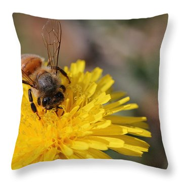 Bee And Dandelion Throw Pillow by Lorri Crossno