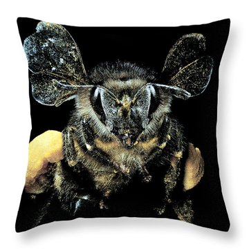 Bee Loaded With Pollen Throw Pillow by Darwin Dale