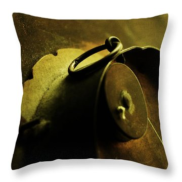 Behind Closed Doors Throw Pillow by Rebecca Sherman