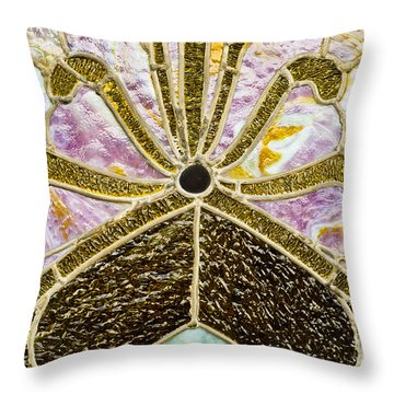 Behind The Glass Throw Pillow by Christi Kraft