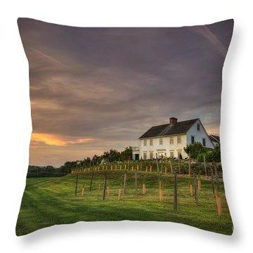Beneath An Evening Sky Throw Pillow by Evelina Kremsdorf