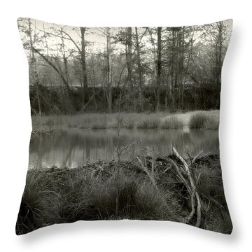 Between Now And Then Throw Pillow by Nina Fosdick