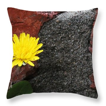 Between The Rocks And A Hard Place Throw Pillow by Lorri Crossno