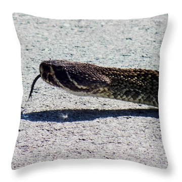 Beware Of Me Throw Pillow by Karen Wiles
