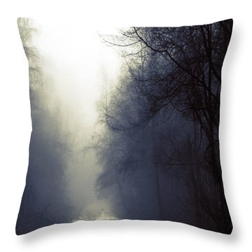 Beyond Throw Pillow by Lisa Knechtel