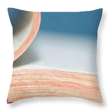 Bibliophile Throw Pillow by Lisa Knechtel