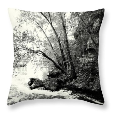 Big Spring In B And W Throw Pillow by Marty Koch