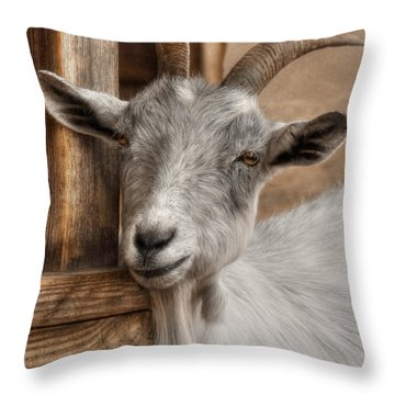 Billy Goat Throw Pillow by Lori Deiter