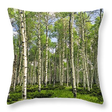 Birch Tree Grove In Summer Throw Pillow by Randall Nyhof