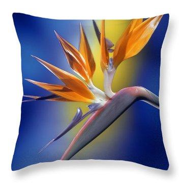 Bird Of Paradise Throw Pillow by Kirk Ellison