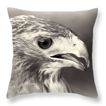 Bird Of Prey Throw Pillow by Dan Sproul