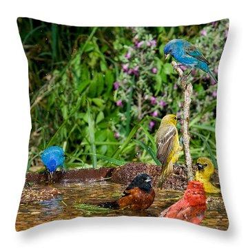 Birds Bathing Throw Pillow by Anthony Mercieca