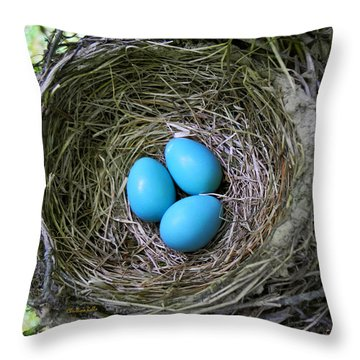 Birds Nest American Robin Throw Pillow by Christina Rollo