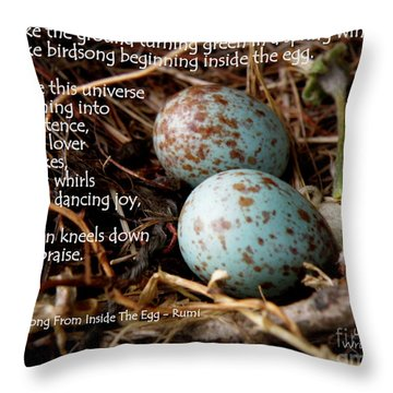 Birdsong From Inside The Egg Throw Pillow by Lainie Wrightson