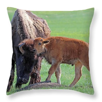 Throw Pillow featuring the photograph Bison With Young Calf by Bill Gabbert