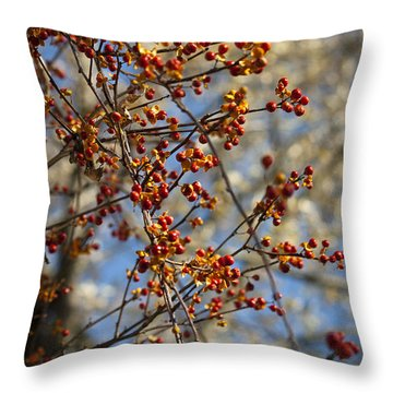 Bittersweet Vertical Throw Pillow by Teresa Mucha